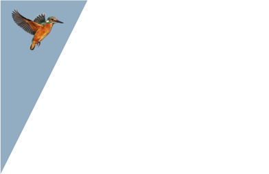 Durrer Systems